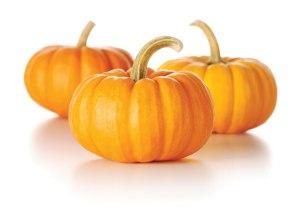 Foodie-14-10-1-pumpkin